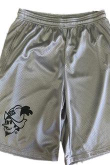 silver-shorts